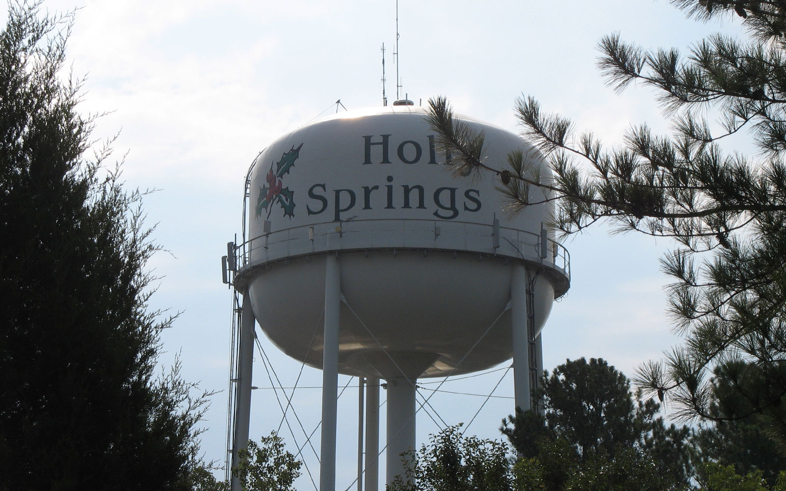 Relocationg to Holly Springs?